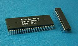 Dual In-Line Package (DIP)